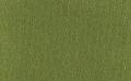 Mika green