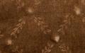 Mela brown