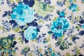 75 modré růže